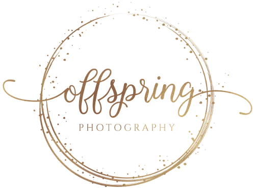 Offspring Photography, Website Logo